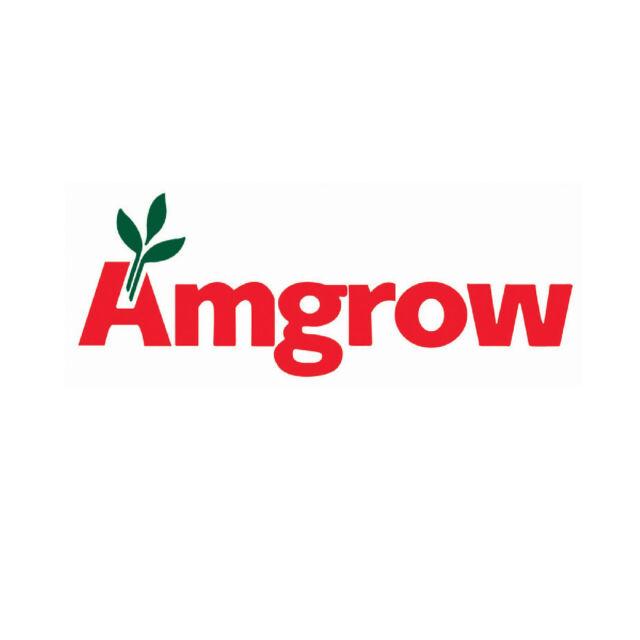 amgrow 600